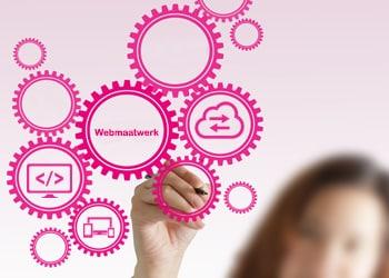 Webdolfijn - webmaatwerk laten bouwen