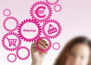Webdolfijn - webshop laten bouwen